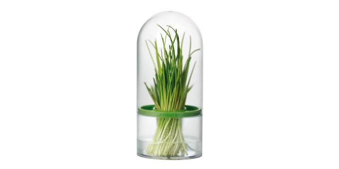 Conservador de ervas aromáticas SENSE