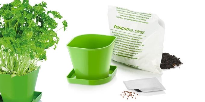 Herb growing set SENSE, parsley
