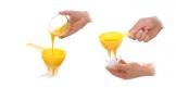 Forma fili d'uovo DELÍCIA