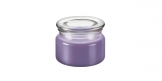 Vela perfumada FANCY HOME 200 g, Provence