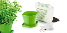 Herb growing set SENSE, oregano