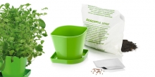 Herb growing set SENSE, Asian blend