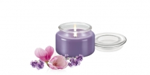 Scented candle FANCY HOME 200 g, Provence