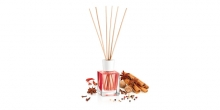 Scent diffuser FANCY HOME 100 ml, Exotic spices