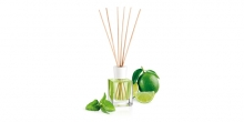 Scent diffuser FANCY HOME 100 ml, Mojito