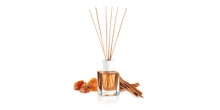 Scent diffuser FANCY HOME 100 ml, Orient