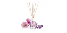 Scent diffuser FANCY HOME 100 ml, Provence