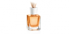 Scent diffuser FANCY HOME 200 ml, Lemon grass