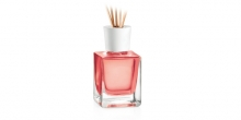 Scent diffuser FANCY HOME 200 ml, Exotic spices