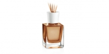 Scent diffuser FANCY HOME 200 ml, Orient