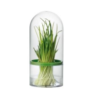 Contenitore salvafreschezza per erbe aromatiche SENSE