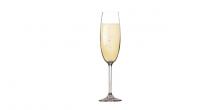 Champagnerglas CHARLIE 220 ml