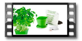 Conjunto p/ cultivar ervas aromáticas SENSE, salsa