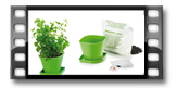 Súprava na pestovanie byliniek SENSE, koriander