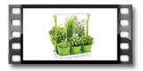 Súprava na bylinky SENSE, s LED osvetlením