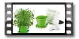 Souprava pro pěstování bylinek SENSE, asijská směs