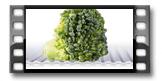 Antibakteriální podložka do lednice FlexiSPACE 150 x 50 cm